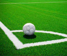 Synthetic Sports Turf